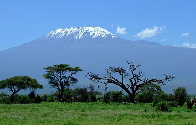 pejzaż z Kilimandżaro