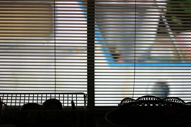 Żaluzje w oknie