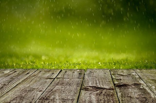 Studnie chłonne w przydomowych ogrodach – jakie odległości obowiązują?