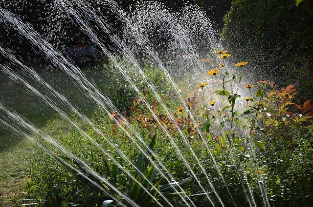 Podlewanie ogrodu zraszaczem
